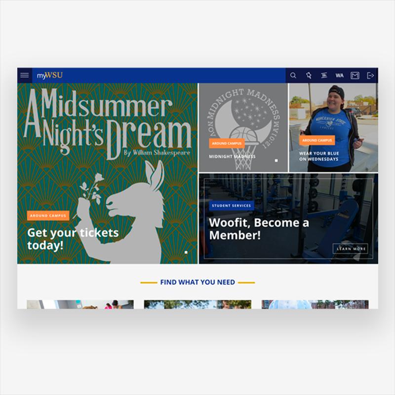 myWSU student portal website design and development