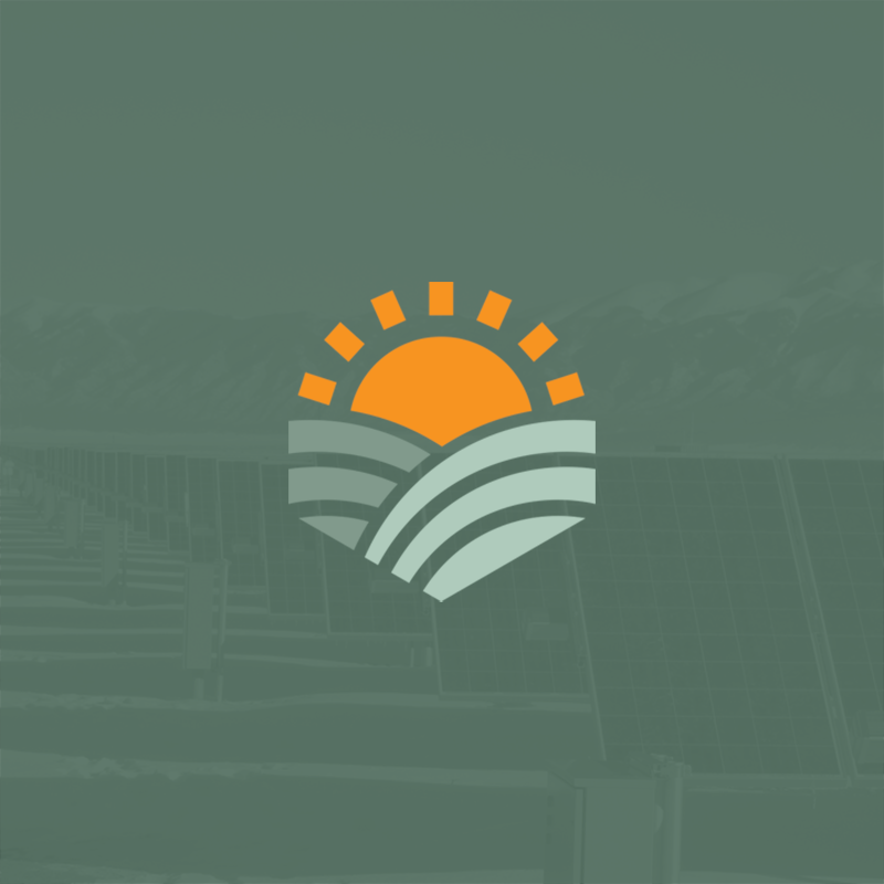 Sun Statement website design and animated video