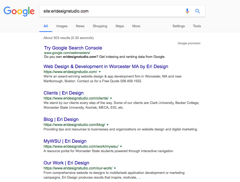 Screenshot of Eri Design Site Index on Google