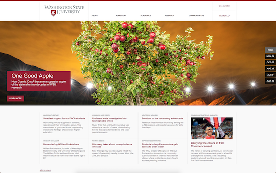Washington State University website